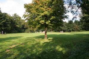 Spielwiese und schattenspendender Baum im Freizeitpark von Lindlar - Ausgangspunkt für Wandern & Hiking