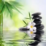 gesundheitsreise zeit für mich - zen gartenteich mit lotusblüte und steinen gestapelt
