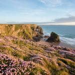 Traumhafte Strände an Englands Südküste im Cornwall